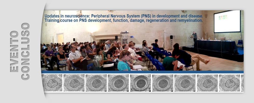Training course on PNS development (01 - 04/07/2014)